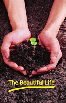 the-beautiful-life